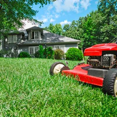 Harkers Island, NC Grass Cutting Services