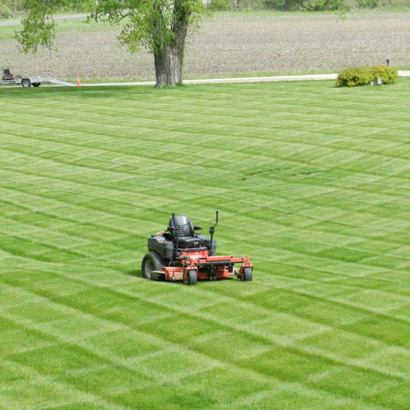 South Point, OH Lawn Care Services