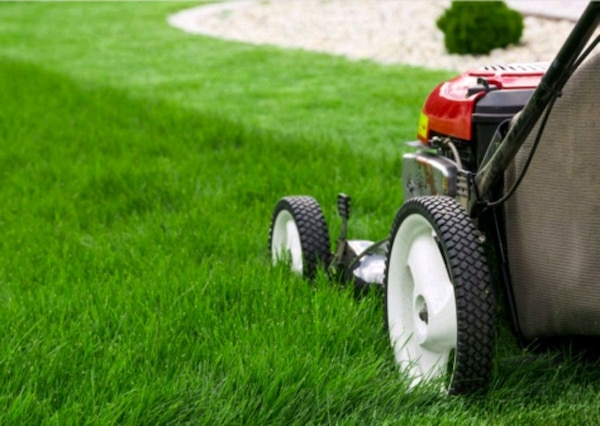 Presque Isle WI Lawn Mowing Services