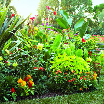 Free tropical garden landscaping quotes tropical garden services free quotes and cost estimates for garden landscaping planning design and more workwithnaturefo